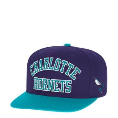 big sale 41979 cda30 ... where to buy wordmark jersey hook snapback charlotte hornets e4e37  9914c discount men charlotte hornets mitchell ness ...