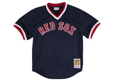 Ted Williams 1990 Authentic Mesh BP Jersey Boston Red Sox Mitchell ... 44c8de9f145