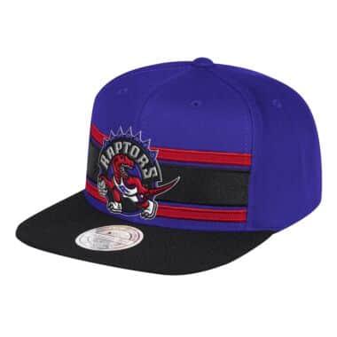 4862d7c86b1 Eredita 110Flex Snapback Toronto Raptors