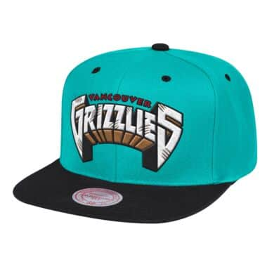 wholesale dealer f6bb4 a18a6 Wordmark 1 Snapback Vancouver Grizzlies